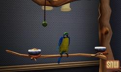 De Sims 3 Beestenbende: Vogels