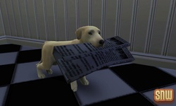 De Sims 3 Beestenbende: BaBa de hond