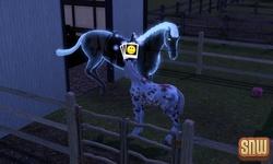De Sims 3 Beestenbende: Estela het spookpaard en GooGoo