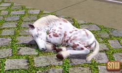 De Sims 3 Beestenbende: Estela het spookpaard