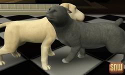De Sims 3 Beestenbende: BaBa de hond en Oopsie-Daisy de kat