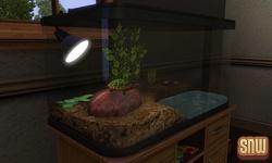 De Sims 3 Beestenbende: Schildpad